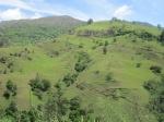 Saraguro landscape